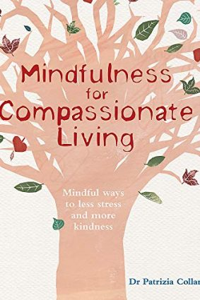 Mindfulness for Compassionate Living: Mindful ways to less stress and more kindness ISBN: 9781856753401