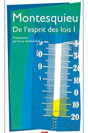 De Lesprit Des Lois 1 (French Edition) ISBN: 9782080703255