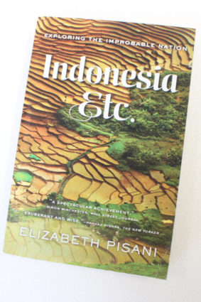 Indonesia Etc.: Exploring the Improbable Nation by Pisani Elizabeth ISBN: 9780393351279